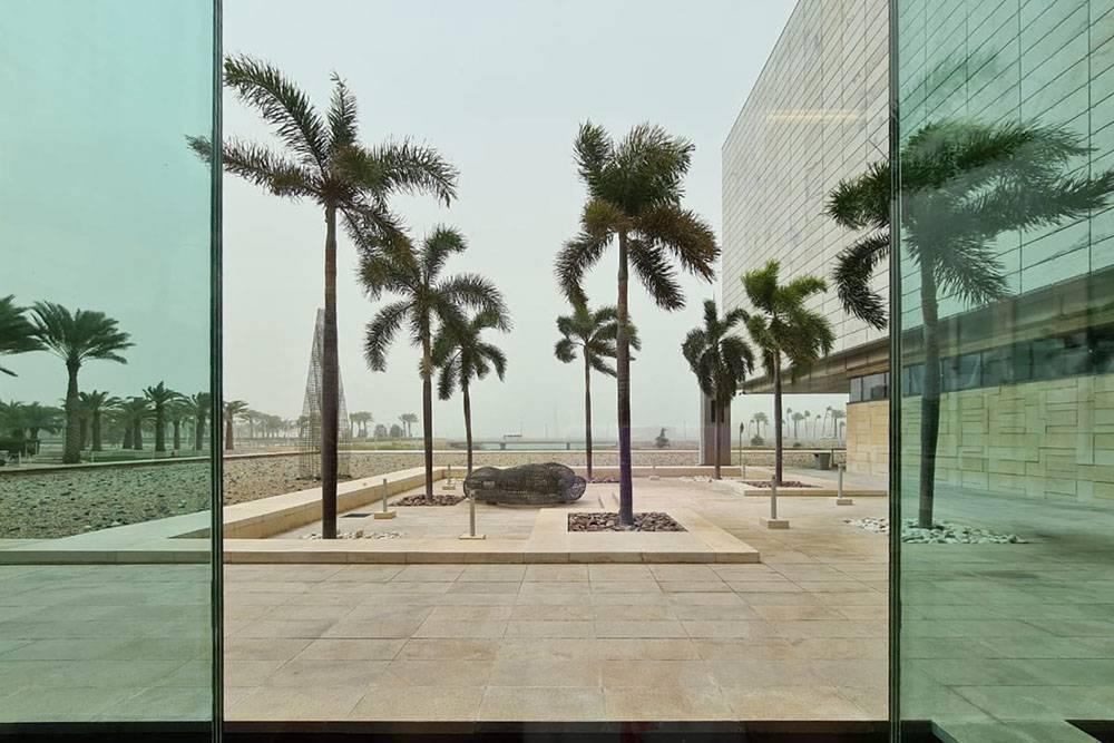 Во время песчаной бури пальмы гнет во все стороны. После бурь все в песке, поломаны некоторые мелкие веточки, с пальм падают листья. Жертв в кампусе не бывает, все знают промеры безопасности