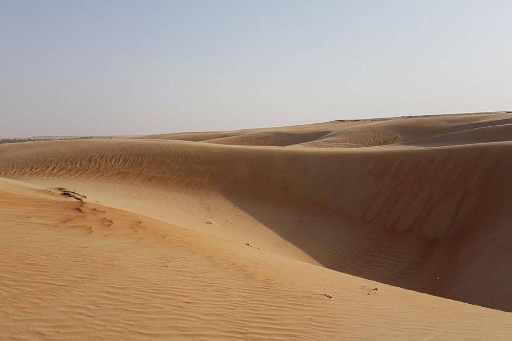 Пустыня Лива в эмирате Абу-Даби. От Дубая до Абу-Даби ехать пару часов. Сафари по пустыням — еще одно излюбленное увлечение туристов