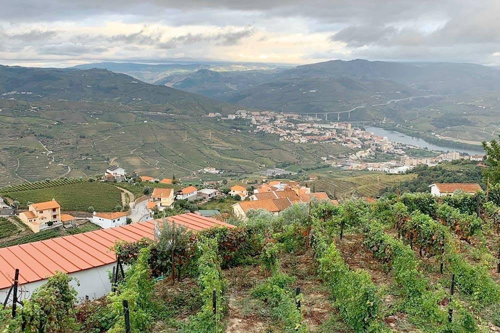 Долина реки Дору. Здесь выращивают виноград дляпортвейна