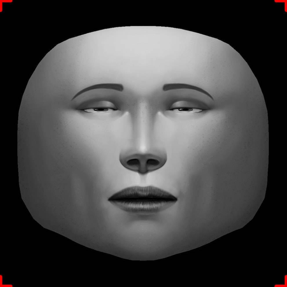 Это специальные референсы от «Спарка». Благодаря им маска, которую вы рисуете, ложится на персонажа правильно