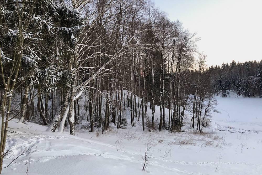 В десяти минутах ходьбы от дома есть озеро. Это фото с берега