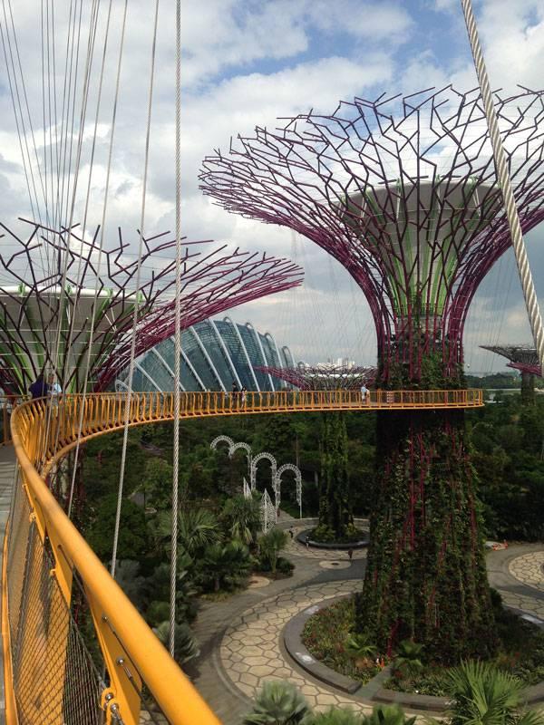Сады у залива — один из новых символов Сингапура
