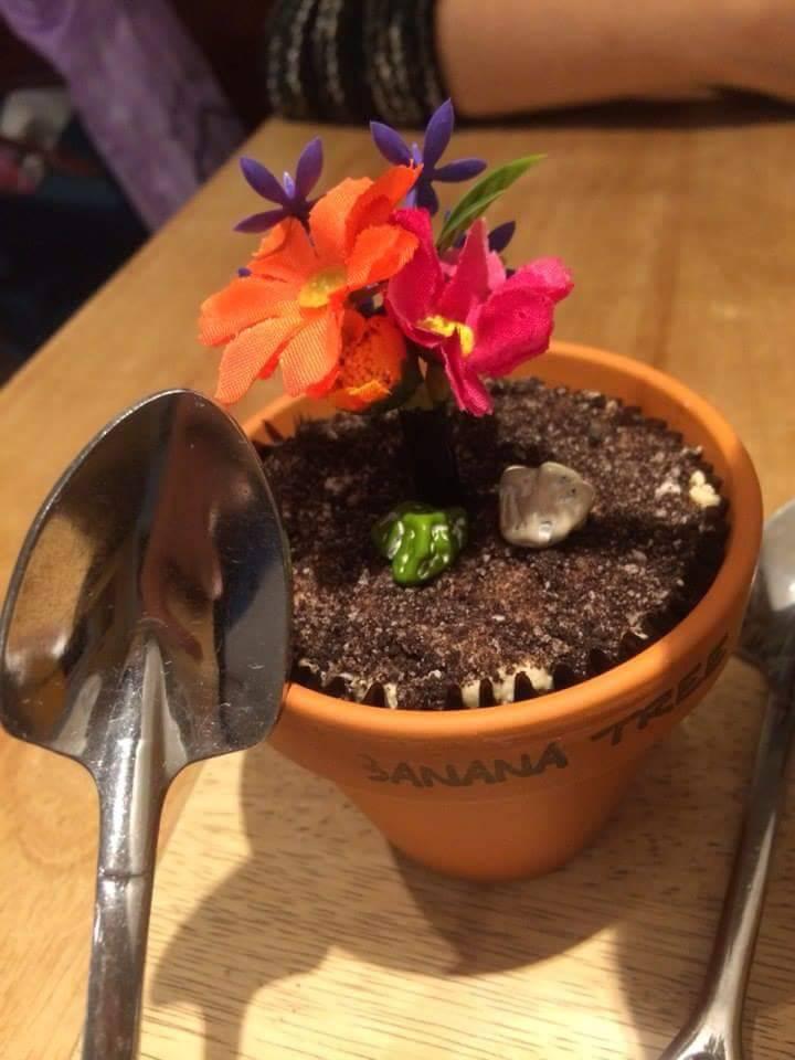 В кафе «Банана-три» подают десерт в виде горшочка с растениями. Есть его надо ложками в виде лопаток
