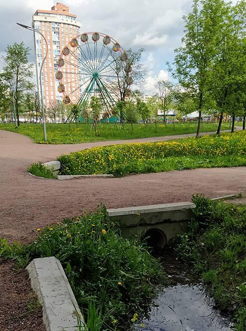 Гуляю в парке и думаю об отношениях с собой