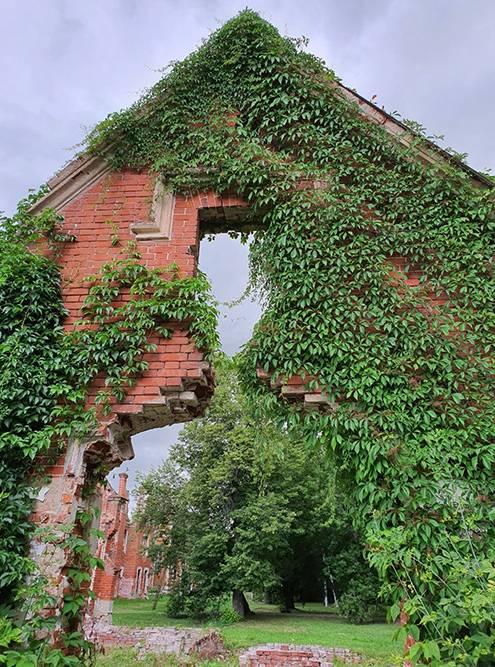 Летом руины флигеля увиты зеленью. Здесь проводят свадебные фотосессии