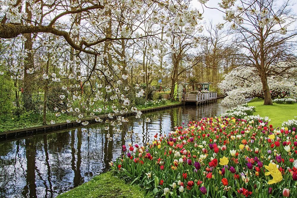 Весной в Нидерландах может быть ветрено: одевайтесь теплее