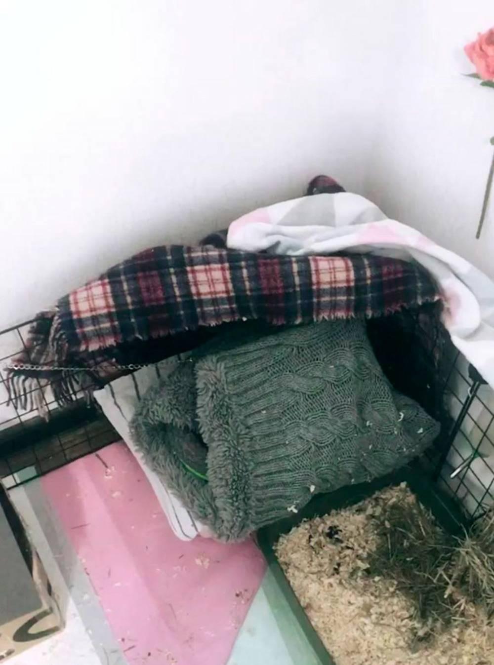 А это мешочек, который я сшила из старого шарфа. Еще мешки можно найти в интернет-магазинах или заказать на «Юле» у рукодельниц