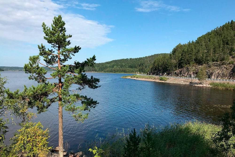 Ехать по трассе — одно удовольствие: она проходит рядом с Ладожским озером