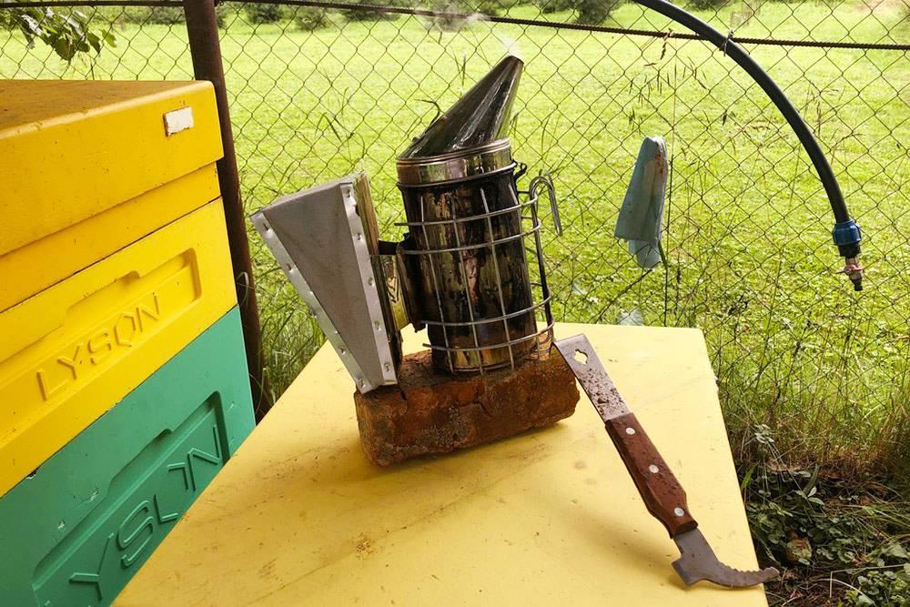 Это мой дымарь, а справа от него — специальная стамеска пчеловода. Стамеска — универсальный инструмент, с ее помощью можно открывать ульи, собирать прополис и делать еще много технических действий. Конечно, можно обойтись и безтакой стамески, но, на мой взгляд, это непрофессионально