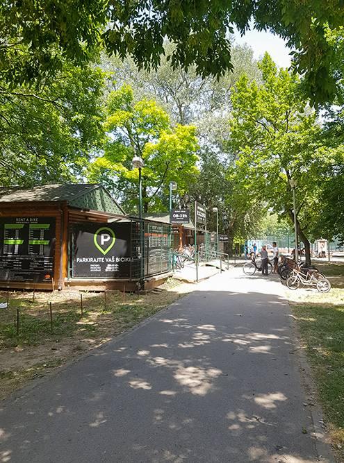 Прокат велосипедов расположен у входа на территорию полуострова