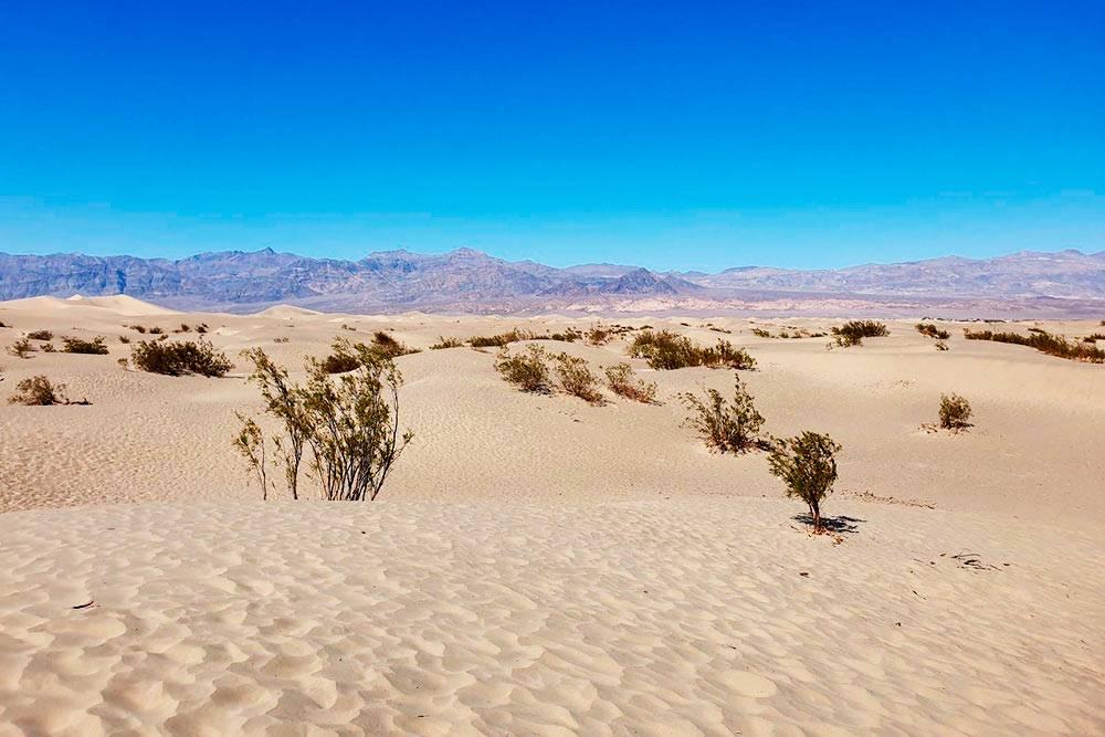 Дюны Mesquite Flat, где снимали эпизоды фильма «Звездные войны». Их высота может быть до 10 метров, но летом здесь невыносимо жарко, поэтому долго гулять не выйдет