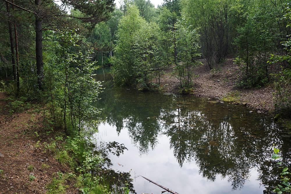Лесное озеро в Больших Котах. Его можно узнать по деревянной беседке
