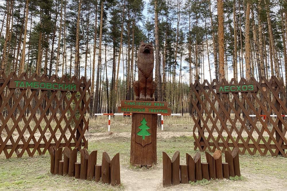 Такой деревянный волк стоит на Рассказовском шоссе на въезде в Тамбов