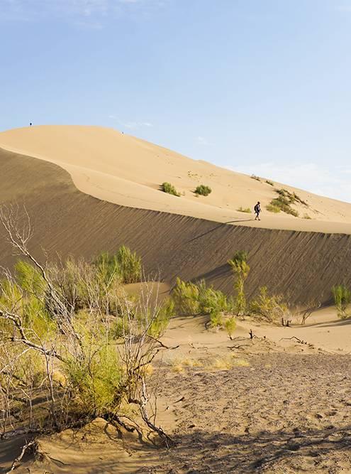 Гулять по бархану трудно: мешает песок и сильный ветер