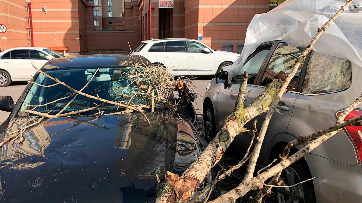 Как отсудить у УК стоимость ремонта машины, пострадавшей от урагана