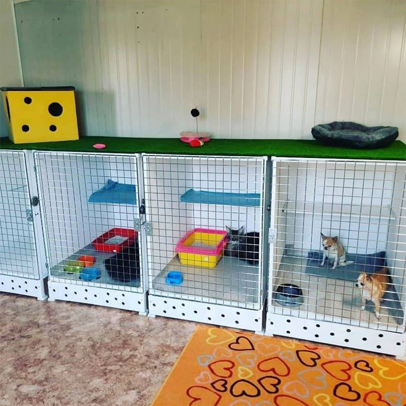 Так выглядит зоогостиница. Мне грустно за животных в клетках. У нас дома намного уютнее Источник: Zoogostinitcha \ farpost.ru