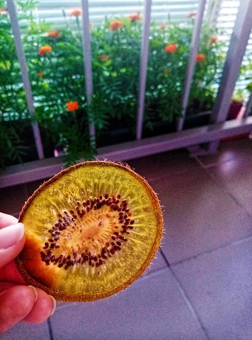Отрабатываю технологию сушки фруктов