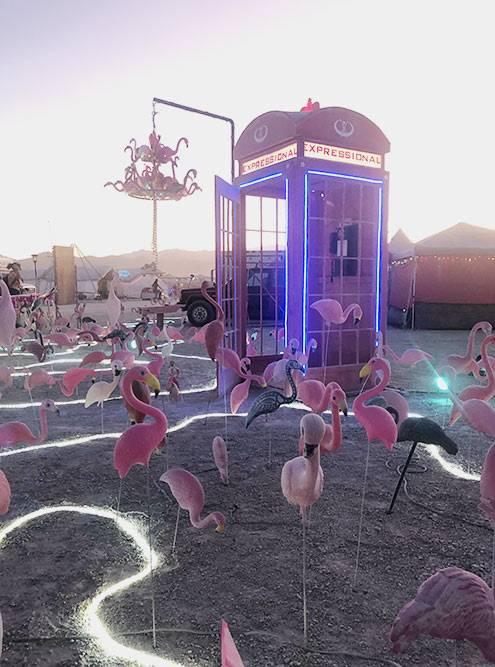 Ребята из Майами оформили свой лагерь в розовых тонах с добавлением неона — все как на Оушн-драйв