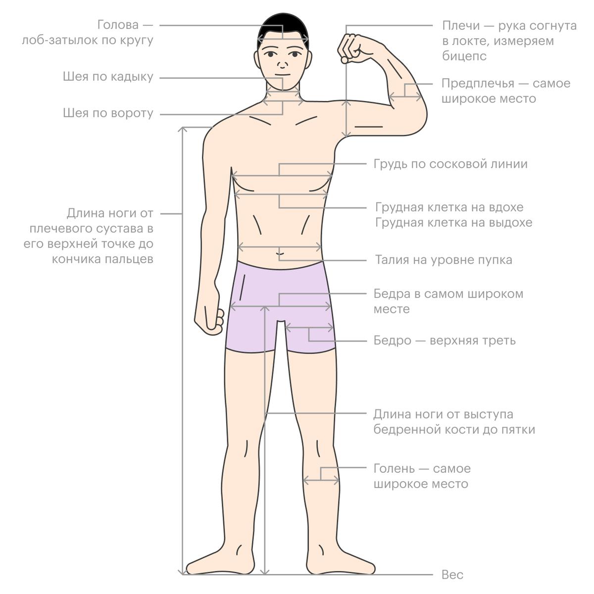 Замеры тела для отслеживания эффективности диеты