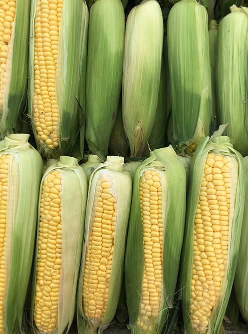 Обожаю кукурузу на гриле