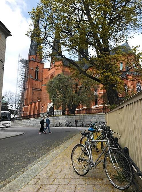 Уппсала — город велосипедистов. В городе нет больших перепадов высот, поэтому велосипедов на дорогах больше, чем в Стокгольме