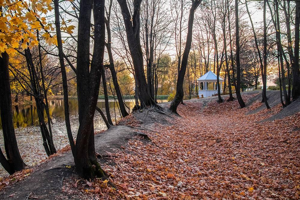 Особенно хорошо в Болдине осенью. Источник: Анастасия Осян