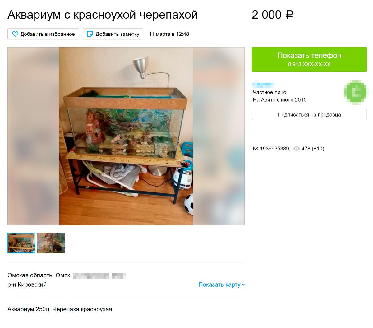 Вот продают маленькую черепашку с аквариумом за 2000<span class=ruble>Р</span>. Источник: «Авито»