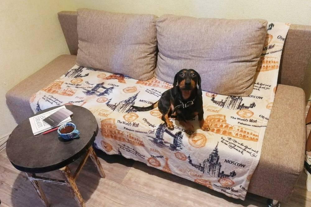 Чтобы быть хостом, необязательно иметь огромный дом. У нас гости спят на кухонном диване