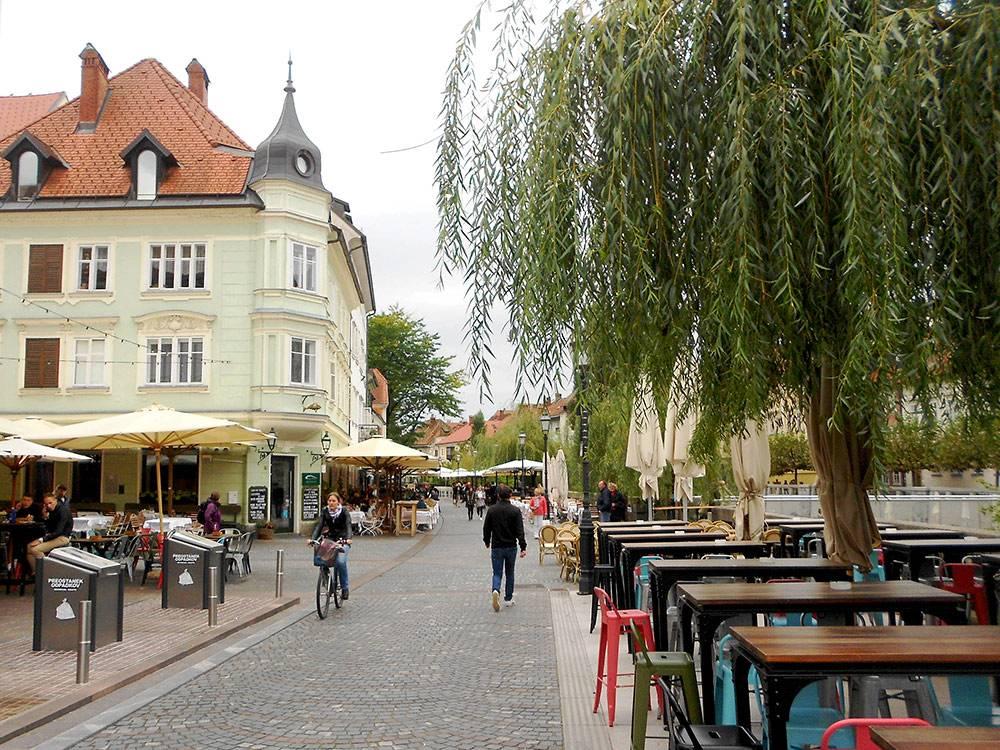 В Любляне почти на всех улицах растут деревья. Это набережная реки Любляницы