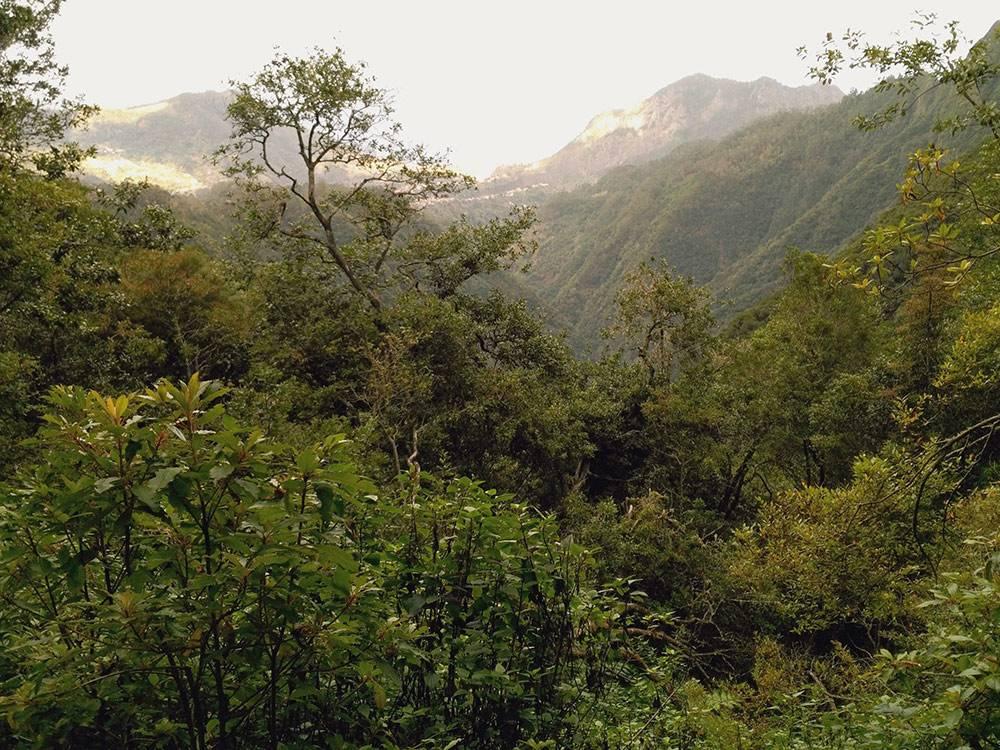 Сам путь туда-обратно занял 5 часов. Прошли 13 км. Дождь периодически заканчивался, и тогда открывался вид на горы