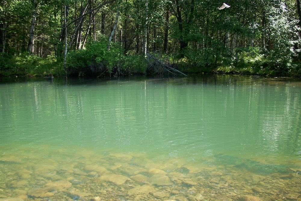 Вода в озере чистая, но холодная