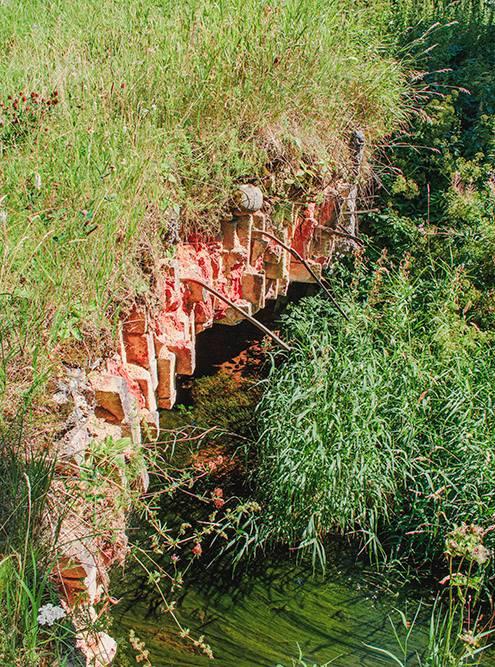 За дворцом есть руины старой мельницы и горбатый мостик — летом их непросто найти из-за густой растительности