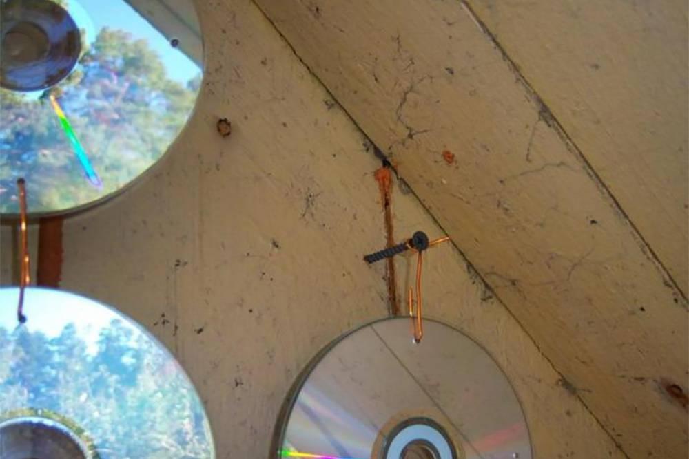 Компакт-диски протыкают гвоздем и вешают на проволоку или веревки. Источник: «100зайцев»