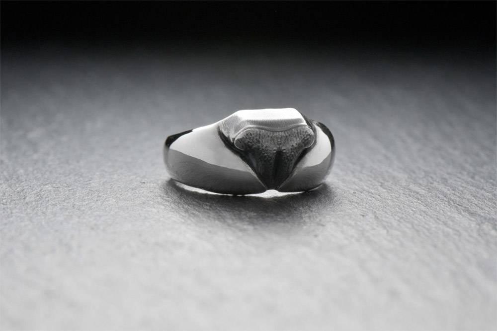 Нормальные девушки хотят колечко с бриллиантами. Я: носик котика, носик котика, носик котика