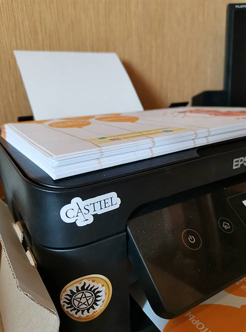 Для бизнеса не подходит обычный домашний принтер. Наш перестал работать после второй очистки