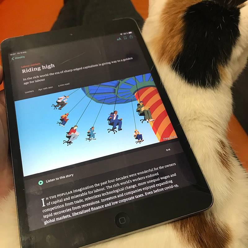 Читаю TheEconomist вместе с кошкой