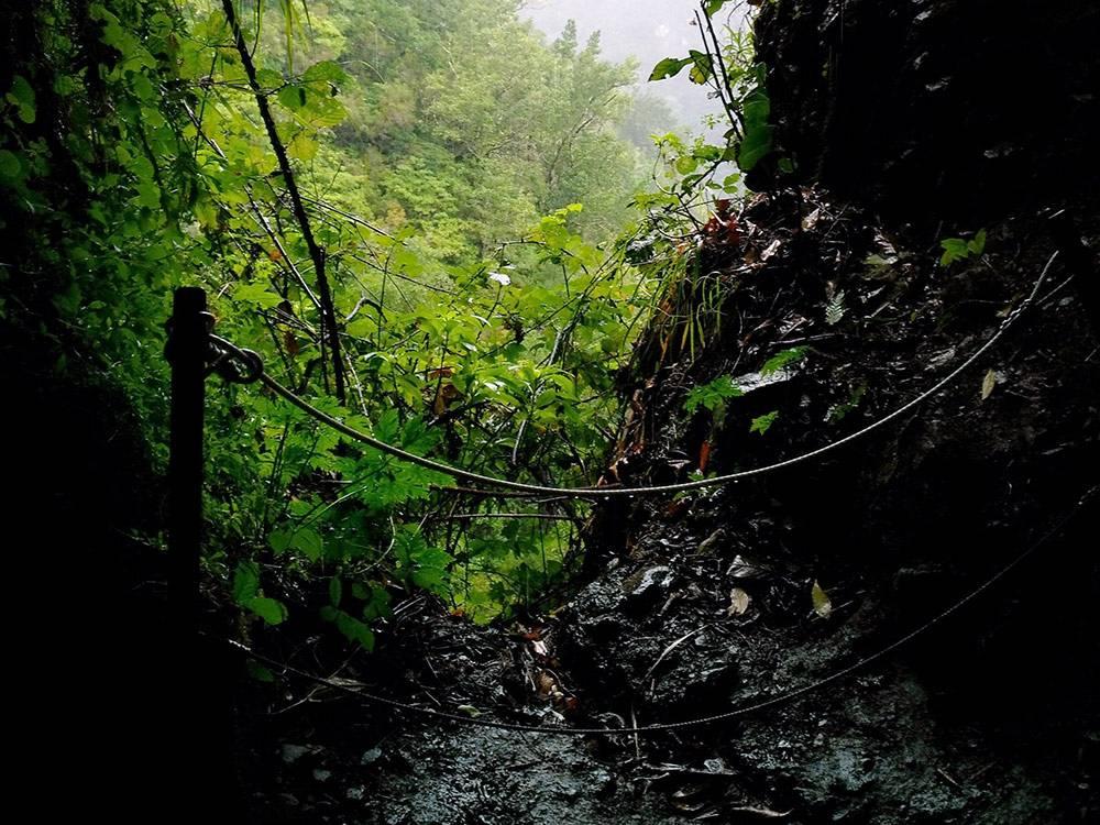Часть пути шли через пещеры. Просветы редко, но бывают. Освещали дорогу фонариками в телефонах