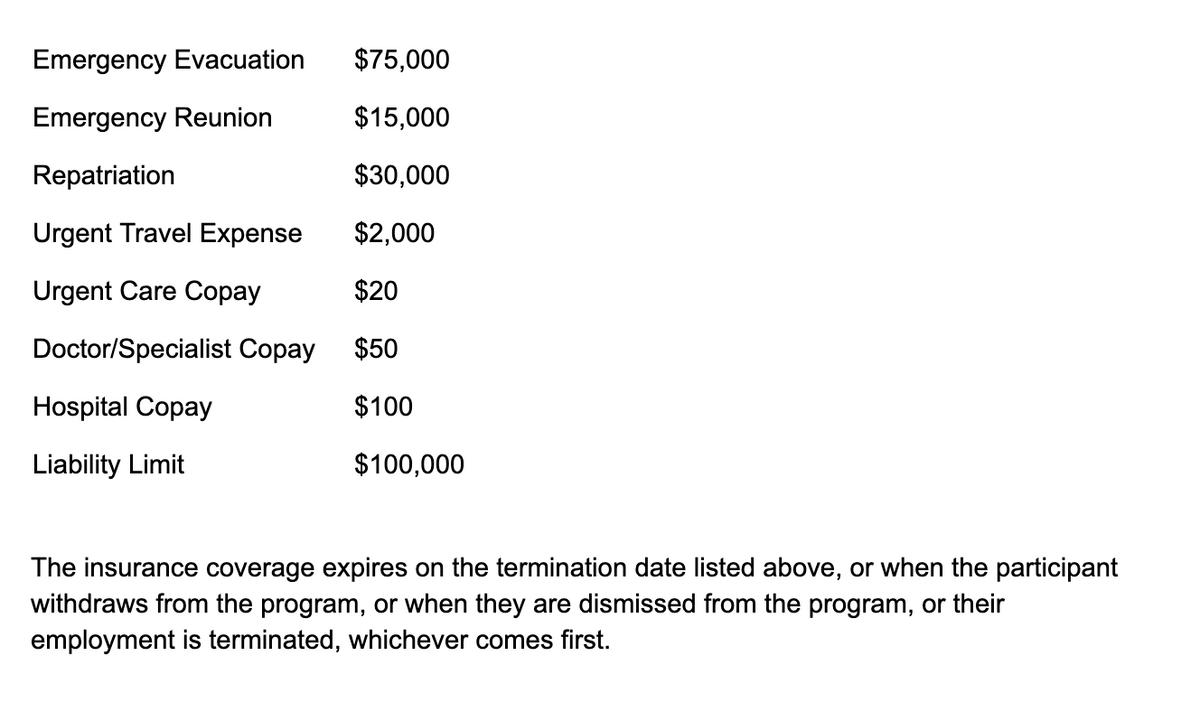 В страховке указаны все суммы, которые необходимо заплатить участнику программы «Ворк-энд-тревел» в различных ситуациях: от экстренного приема до госпитализации