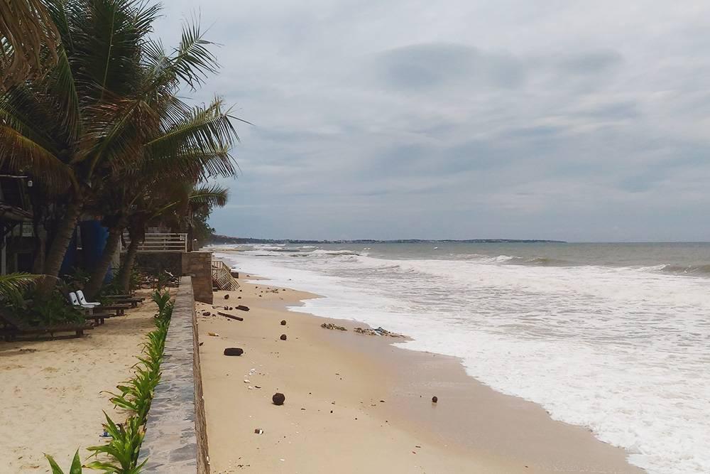 Пляж в Муйне в сентябре. Волны вынесли на берег мусор