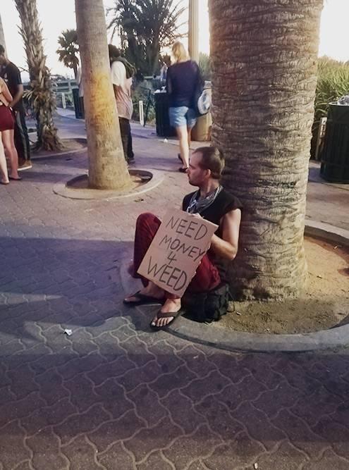 Этот парень просит денег для покупки марихуаны, которая легализована в Калифорнии