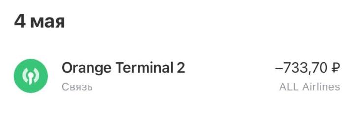 В начале поездки потратили на интернет 733<span class=ruble>Р</span>