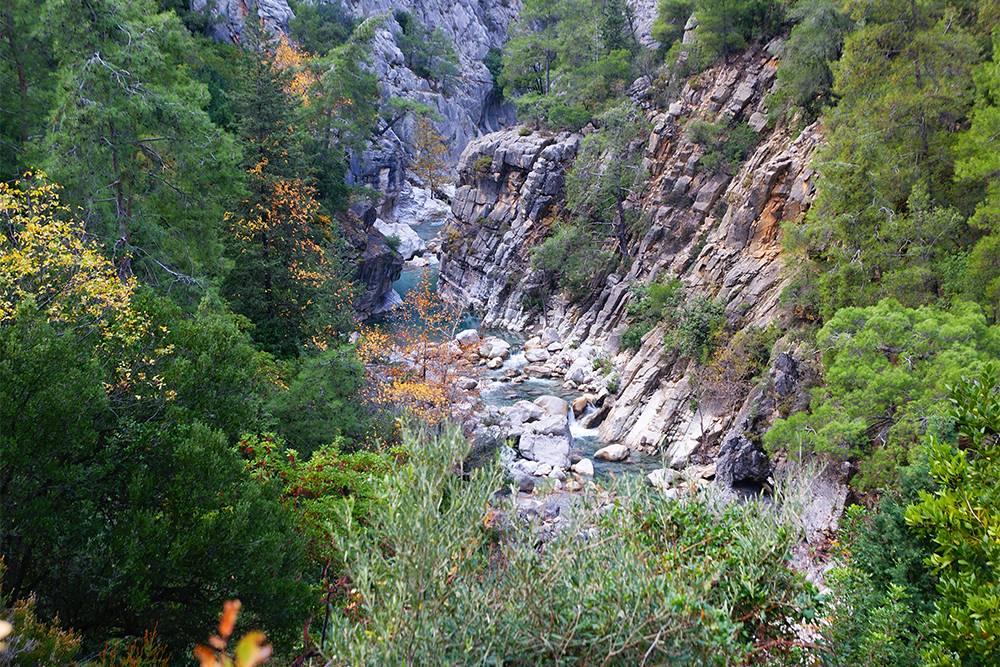 Вид на каньон сверху