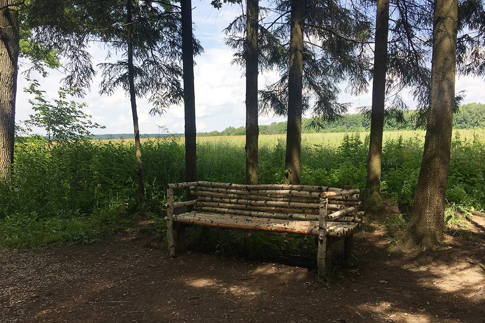 От скамейки можно вернуться к дому Толстого по тропинке, а затем по Прешпекту спуститься к выходу из усадьбы