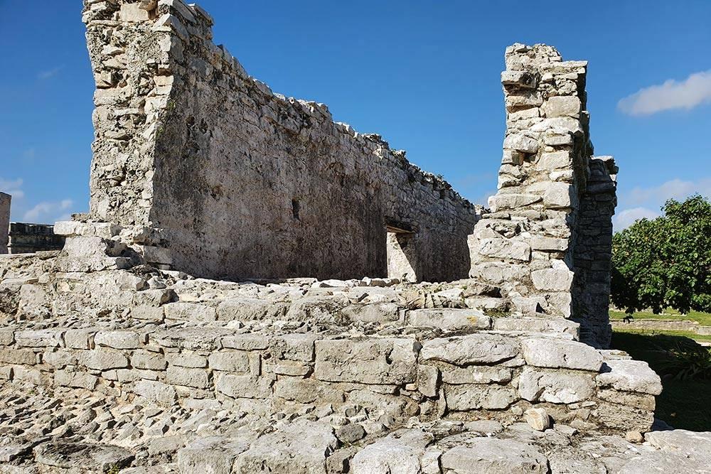По пирамидам в Тулуме ползают ящерицы и греются на солнце, сливаясь с камнями. На фото есть ящерица
