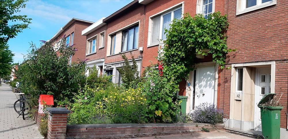 Так выглядит обычный жилой район Антверпена. Обычно это узенькие дома на два-три этажа, в каждом изкоторых живет одна семья. Дома плотно примыкают друг другу, образуя так называемый сплошной фасад, как вАмстердаме