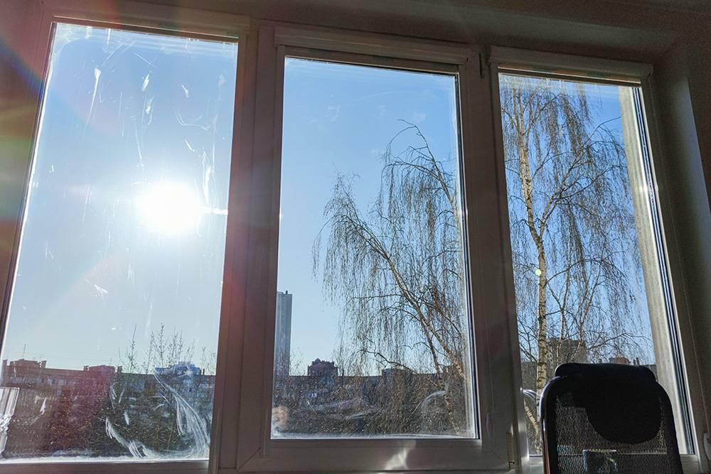 Без штор солнце у нас в квартире беспощадно. А окна, конечно, надо помыть. В Питере хорошую погоду надо ловить, но по утрам почти всегда солнечно