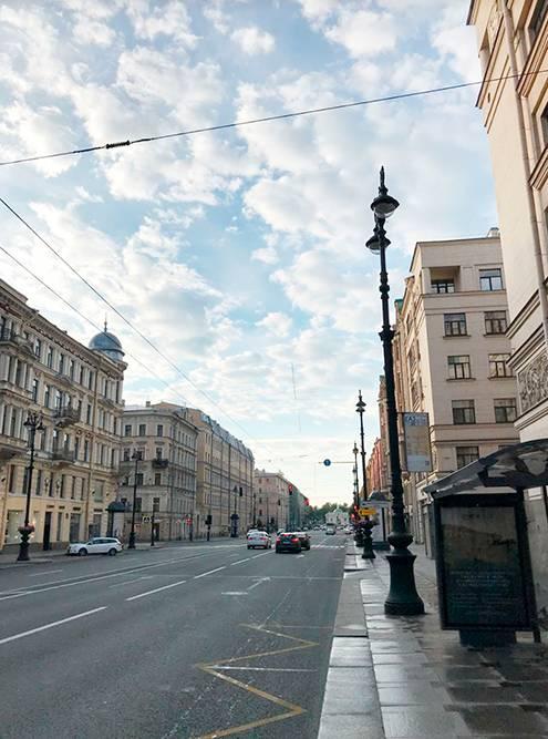 Невский проспект рядом с нашим домом