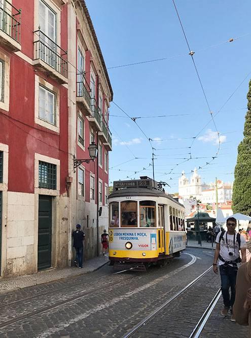 Трамвай по знаменитому маршруту № 28