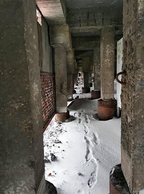 Дома на сваях в Норильске встречаются часто. На бетонных столбах стоят все панельки города