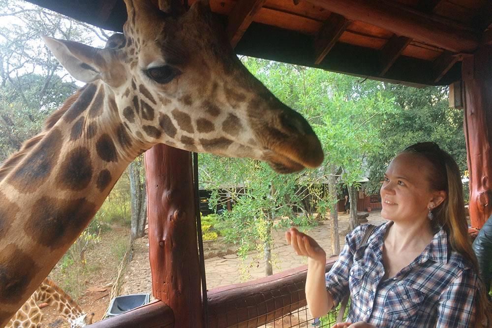 Поймать мечтательный взгляд жирафа — бесценно, но и в такой поездке мне удалось неплохо сэкономить